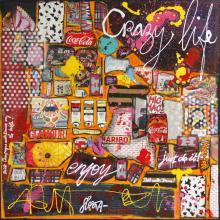 Tableau CRAZY LIFE : Artiste peintre Sophie Costa